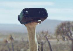 Avestruz Samsung con realidad virtual
